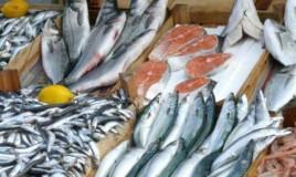 купить рыбу мелким оптом в москве