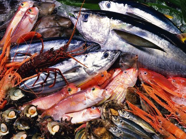 рыба северных морей купить